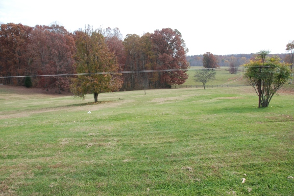 From the Backyard of our old home in Clifford Virginia